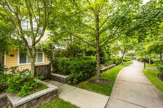 """Photo 16: 2 6878 SOUTHPOINT Drive in Burnaby: South Slope Townhouse for sale in """"CORTINA"""" (Burnaby South)  : MLS®# R2071594"""