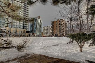 Photo 27: 203 215 14 Avenue SW in Calgary: Beltline Apartment for sale : MLS®# A1092010