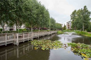 """Photo 18: 426 5500 ANDREWS Road in Richmond: Steveston South Condo for sale in """"SOUTHWATER"""" : MLS®# R2288245"""