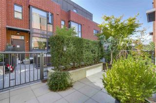 """Photo 19: 214 1961 COLLINGWOOD Street in Vancouver: Kitsilano Townhouse for sale in """"VIRIDIAN GREEN"""" (Vancouver West)  : MLS®# R2205025"""