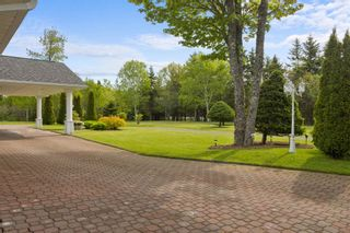 Photo 4: 51 Sandy Point Road in Porters Lake: 31-Lawrencetown, Lake Echo, Porters Lake Residential for sale (Halifax-Dartmouth)  : MLS®# 202114719