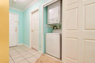 Photo 7: 114 22514 116 Avenue in Maple Ridge: East Central Condo for sale : MLS®# R2489606