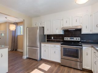 Photo 6: 51 Templewood Mews NE in Calgary: Temple Detached for sale : MLS®# A1039525