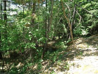 Photo 36: 400 MARY LAKE (GRYFFIN BLUFFS LANE) Lane in Port Sydney: Vacant Land for sale : MLS®# 40126538