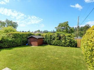 Photo 19: 4024 Carey Rd in : SW Marigold House for sale (Saanich West)  : MLS®# 876555