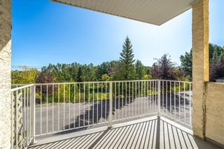 Photo 17: 101 4520 4 Street NW in Calgary: Highland Park Apartment for sale : MLS®# A1078542