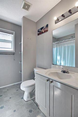 Photo 33: 327 Taravista Street NE in Calgary: Taradale Detached for sale : MLS®# A1125170