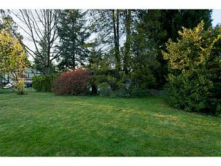 Photo 9: 12455 217TH Street in Maple Ridge: West Central House for sale : MLS®# V1002146
