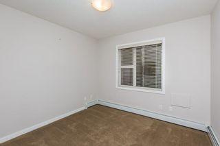 Photo 22:  in Edmonton: Zone 56 Condo for sale : MLS®# E4260150