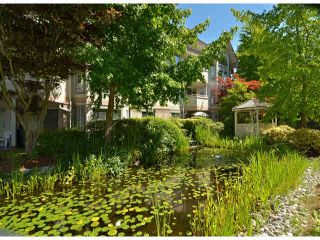 """Photo 19: 217 7161 121ST Street in Surrey: West Newton Condo for sale in """"The Highlands"""" : MLS®# F1418736"""