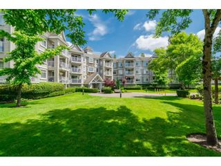 """Photo 1: 305 20896 57 Avenue in Langley: Langley City Condo for sale in """"BAYBERRY LANE"""" : MLS®# R2214120"""