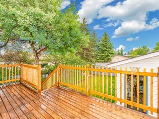 Photo 24: 3240 56 Street NE in Calgary: Pineridge Detached for sale : MLS®# C4256350
