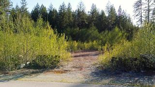 "Photo 8: 12905 246 Street in Maple Ridge: Websters Corners Land for sale in ""Allco Park"" : MLS®# R2576635"