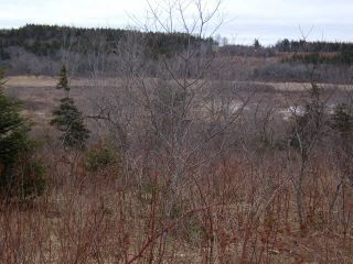 Photo 3: LOT PLEASANT VALLEY in Yarmouth: County Hwy 340 Vacant Land for sale : MLS®# 4868156