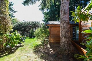 Photo 52: 1115 Evergreen Ave in : CV Courtenay East House for sale (Comox Valley)  : MLS®# 885875