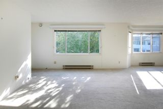 Photo 3: 316 3931 Shelbourne St in : SE Mt Tolmie Condo for sale (Saanich East)  : MLS®# 888000