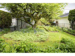 Photo 2: 769 W 26TH Avenue in Vancouver: Cambie House for sale (Vancouver West)  : MLS®# V1119087