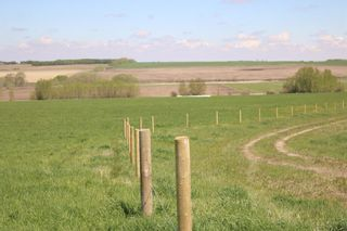 Photo 9: On  Range Road 2.5: Rural Mountain View County Land for sale : MLS®# A1112456