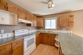 Photo 18: 172 ERIN MEADOW Way SE in Calgary: Erin Woods Detached for sale : MLS®# A1028932