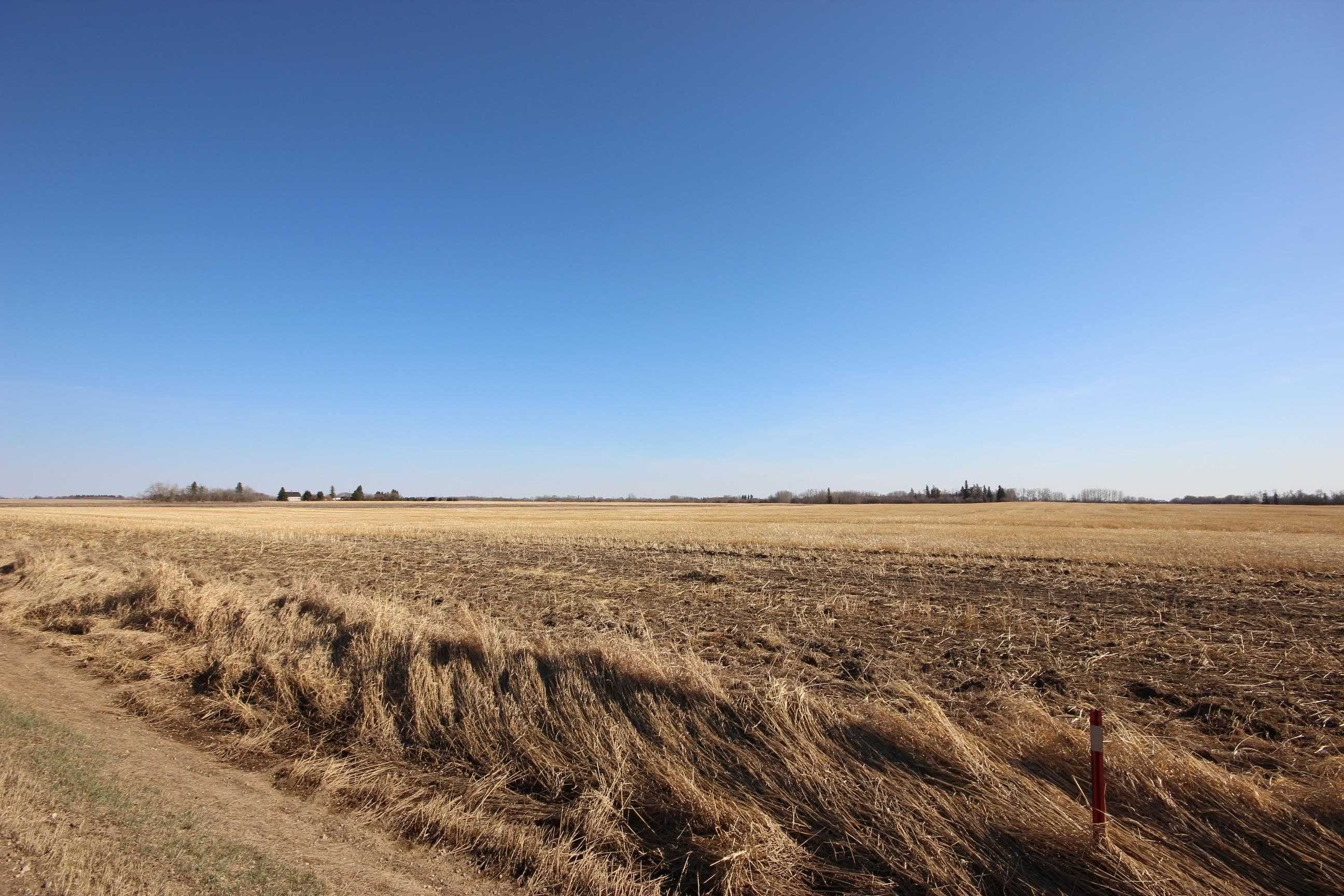 Main Photo: Lot 2 TWP 564 RR 250: Rural Sturgeon County Rural Land/Vacant Lot for sale : MLS®# E4265825