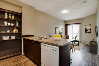 Photo 6: 3309 73 Erin Woods Court SE in Calgary: Erin Woods Apartment for sale : MLS®# A1150602