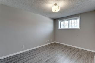 Photo 36: 3812 49 Street NE in Calgary: Whitehorn Detached for sale : MLS®# A1054455