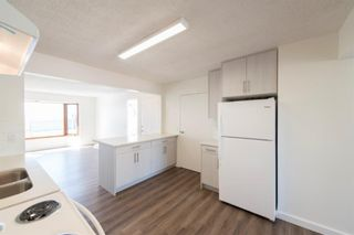 Photo 4: 227 Lynnwood Drive SE in Calgary: Ogden Detached for sale : MLS®# A1130936