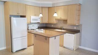 Photo 2: 313 10116 80 Avenue in Edmonton: Zone 17 Condo for sale : MLS®# E4229427