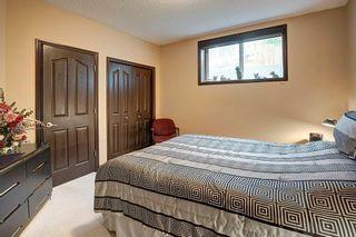 Photo 27: 230 AUBURN BAY Cove SE in Calgary: Auburn Bay Detached for sale : MLS®# A1096112