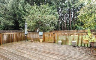 Photo 19: 4571 DALLYN ROAD in Richmond: East Cambie 1/2 Duplex for sale : MLS®# R2352153