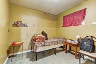 Photo 21: 243 TARACOVE ESTATE Drive NE in Calgary: Taradale Detached for sale : MLS®# C4303627