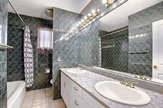 Photo 21: 10443 Wapiti Drive SE in Calgary: Willow Park Detached for sale : MLS®# A1128951