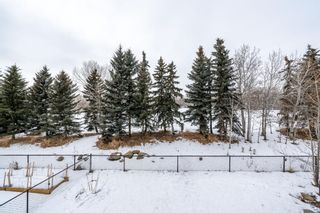 Photo 48: 464 Crystal Green Manor: Okotoks Detached for sale : MLS®# A1074152