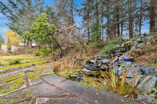 Photo 17: 2413 Catherwood Rd in : CV Merville Black Creek House for sale (Comox Valley)  : MLS®# 861013