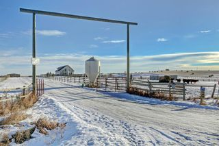 Photo 3: 30117 RANGE ROAD 22: Rural Mountain View County Detached for sale : MLS®# A1051168