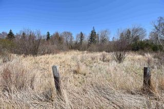Photo 2: Lots North Range Cross Road in Barton: 401-Digby County Vacant Land for sale (Annapolis Valley)  : MLS®# 202110298
