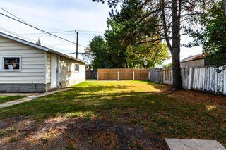 Photo 29: 8723 164 Street in Edmonton: Zone 22 House for sale : MLS®# E4263383