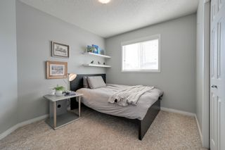Photo 25: 12023 19 Avenue SW: Edmonton House  : MLS®# E4190455