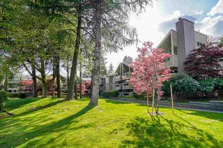 "Photo 25: 314 932 ROBINSON Street in Coquitlam: Coquitlam West Condo for sale in ""The Shaughnessy"" : MLS®# R2575721"