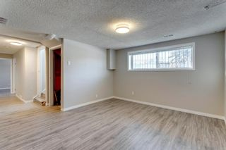 Photo 45: 3812 49 Street NE in Calgary: Whitehorn Detached for sale : MLS®# A1054455