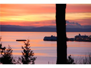 Photo 1: 731 ENGLISH BLUFF Road in Tsawwassen: English Bluff House for sale : MLS®# V1019032