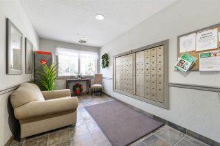 Photo 30: 414 8942 156 Street in Edmonton: Zone 22 Condo for sale : MLS®# E4222565