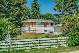 Photo 32: 5920 BUCKTHORN Road NW in Calgary: Thorncliffe Detached for sale : MLS®# C4172366