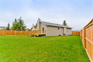Photo 34: 45 Martinview Crescent NE in Calgary: Martindale Detached for sale : MLS®# A1112618