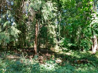 Photo 3: 99 Pirates Lane in : Isl Protection Island Land for sale (Islands)  : MLS®# 882311
