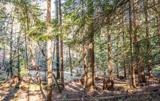 Photo 15: 2674 Galleon Way in : GI Pender Island House for sale (Gulf Islands)  : MLS®# 871623