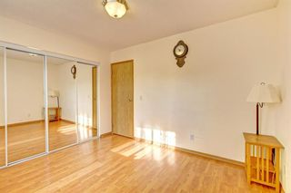 Photo 14: 25 Martinview Crescent NE in Calgary: Martindale Detached for sale : MLS®# A1107227