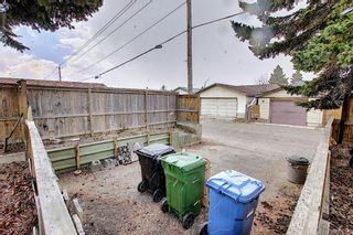 Photo 46: 367 Maitland Crescent NE in Calgary: Marlborough Park Detached for sale : MLS®# A1093291