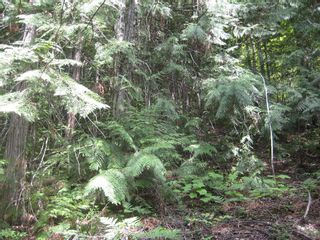 Photo 8: Lot 23 Vickers Trail in Anglemont: Land Only for sale : MLS®# 10011652