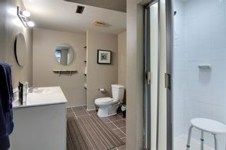 Photo 23: : Cluny Detached for sale : MLS®# A1111259